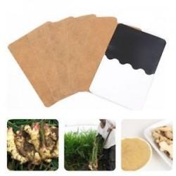 10 db. 10Pcs méregtelenítő test lábtalp javítás Herbal Weight loss Ginger Extract egészségügyi ellátás