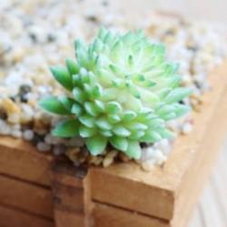 9 * Szimuláció Mini műanyag miniatűr pozsgás növények Otthoni kert Iroda dekoráció