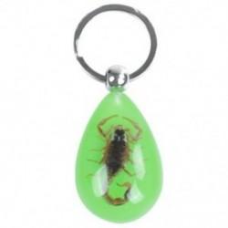 1X (esőcsepp alakú Scorpion borostyán medál hasított lapos gyűrű kulcstartó Adron F5V9)