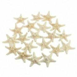 20db fehér, fehérített Knobby tengeri csillag esküvői megjelenítésű kagyló kézműves dekoráció J1S6