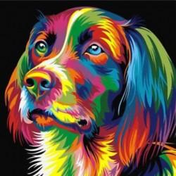 2X (DIY keret nélküli kép faliolajfestménynél Állati absztrakt kutya rajz D D8I2