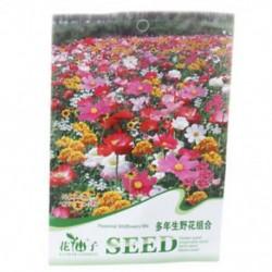 2X virágmag-árnyéktolerancia vadvirágok keveréke 200 mag vetőkertkerthez BL