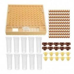 1X (Méhészeti kupakészlet 100 sejtcsészéhez Méhszerszámkészlet Bee C Y2R2.)