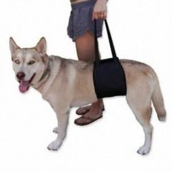 2X (kedvtelésből tartott kéz kedvtelésből tartott kutya védőövével posztoperatív védelem reha A3W1-vel