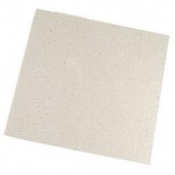 2 x csere 12 x 12 cm méretű lemez csillám mikrohullámú R3O8-hoz
