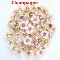 Pezsgő - 50x mini selyem mesterséges százszorszép virágfej esküvői lakberendezési barkács kézműveshez