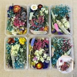 Nincs szín - Assroetd valódi szárított virágok préselt levelek epoxigyanta ékszerek készítéséhez DIY US